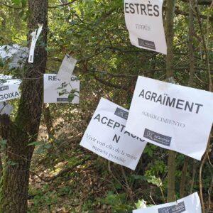 la granja gestion emociones bosque