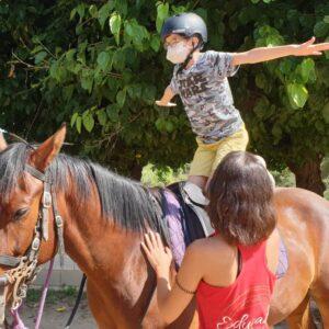 la granja picador cavalls